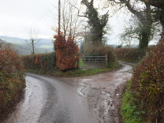Bend in minor road and track to Dyers