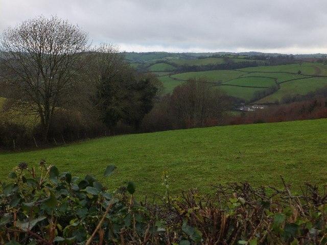 Valley of Little Henbeer Wood