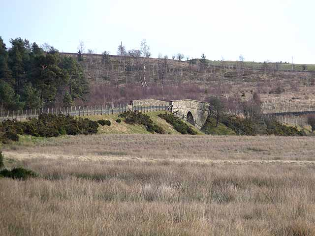 Bridge over the old Rothbury line