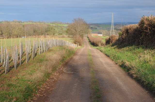 Track and bridleway to Woodlands Farm