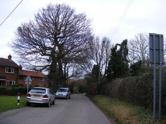 Wittons Lane