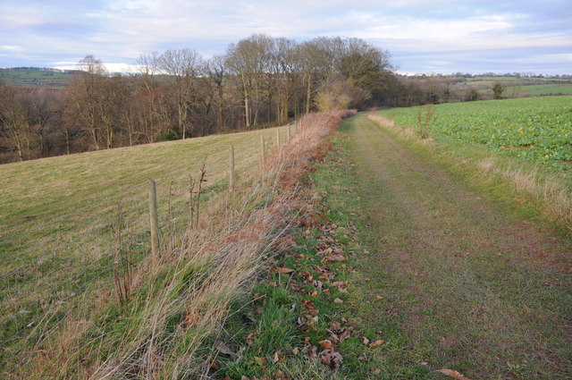 Bridleway to Hoarwithy