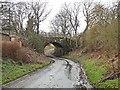 "NZ0685 : Railway bridge on the ""Wannie"" line by Oliver Dixon"