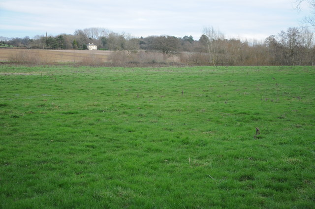 Meadowland at Hoarwithy