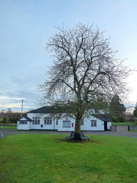 Village hall and tree