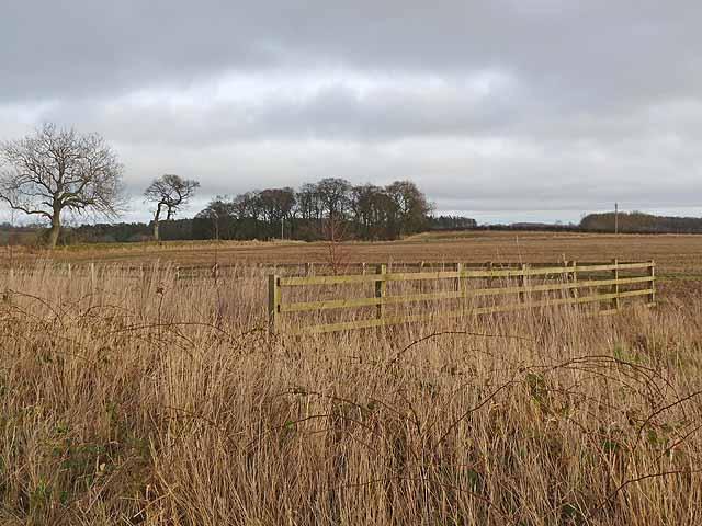 Fences and fields near Hartburn