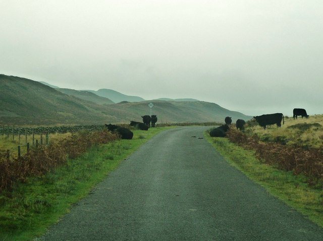 A misty day on the road to Laurieston