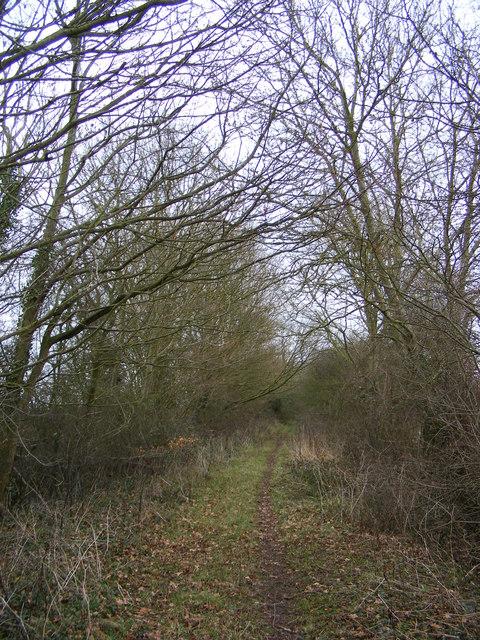 Kings Lane Bridleway to Tannington Long Lane