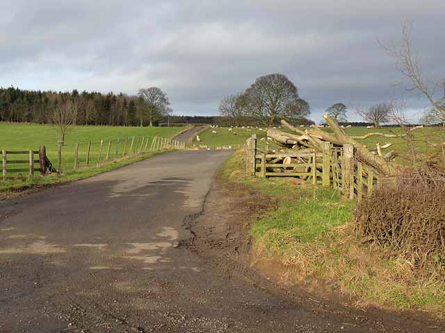 Private road to Needless Hall