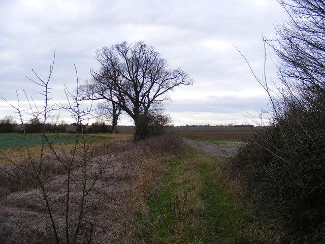 Kings Lane Bridleway to Mill Cottage