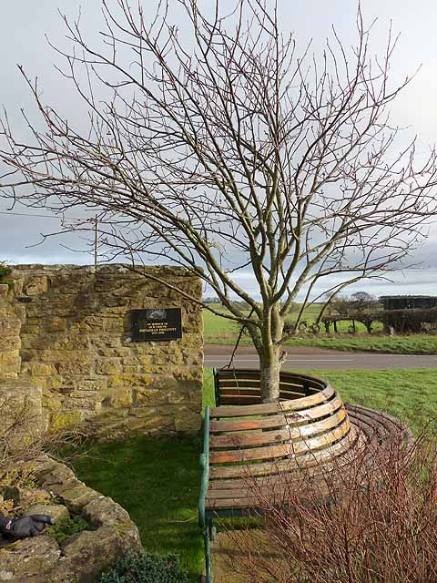 Memorial bench and tree at the Dyke Neuk pub