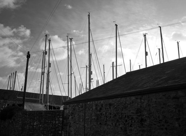 Forest of masts at Topsham