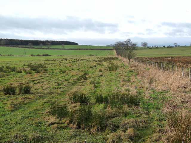 Farmland north of Needless Hall