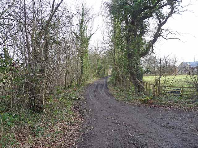 Farm road at East Thornton