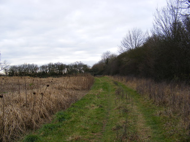 Looking towards the Bee Hives at Downs Farm