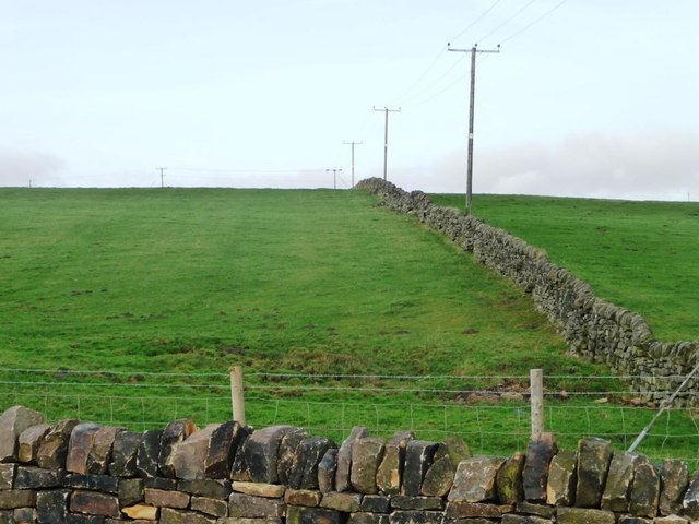 Telegraph poles following a dry stone wall