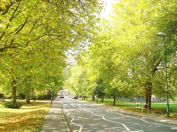Hartfield Road, towards village