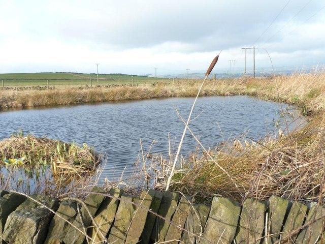 Pond near Upper Nab