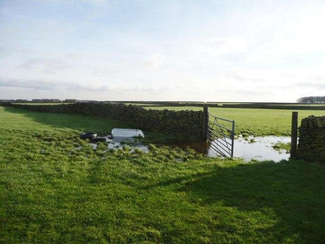 Flooded field gate near Slack Mouth