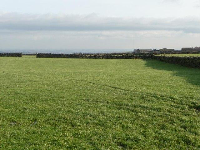 Walled field near Slack Mouth