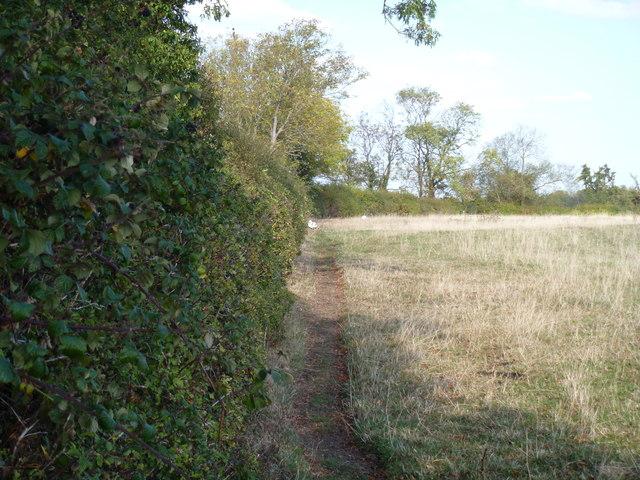 Field edge path