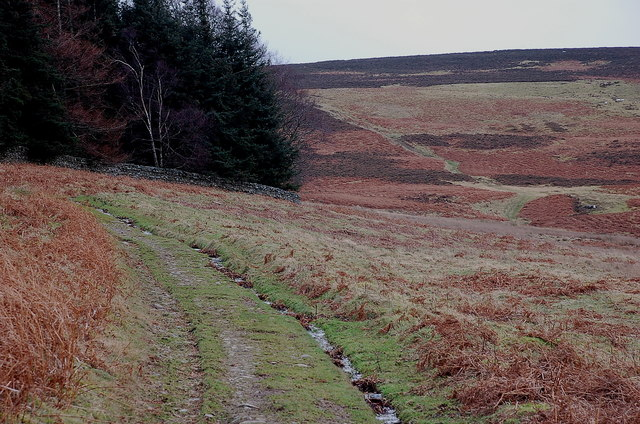 Hill track to Dead Wife's Grave