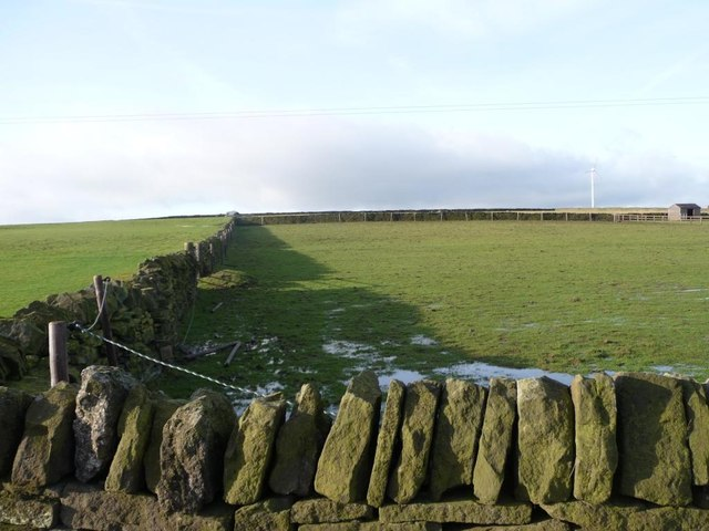 Wet and walled field
