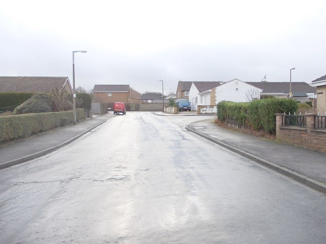 Sycamore Avenue - viewed from Glenlee Road