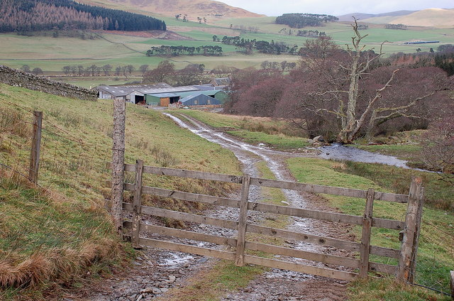 Track to Easter Dawyck