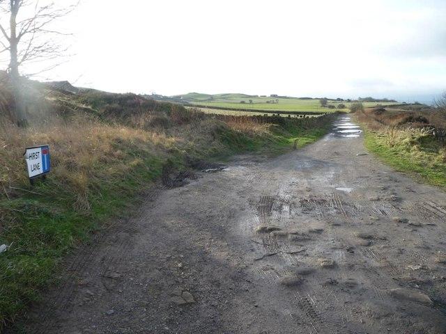 Hirst Lane