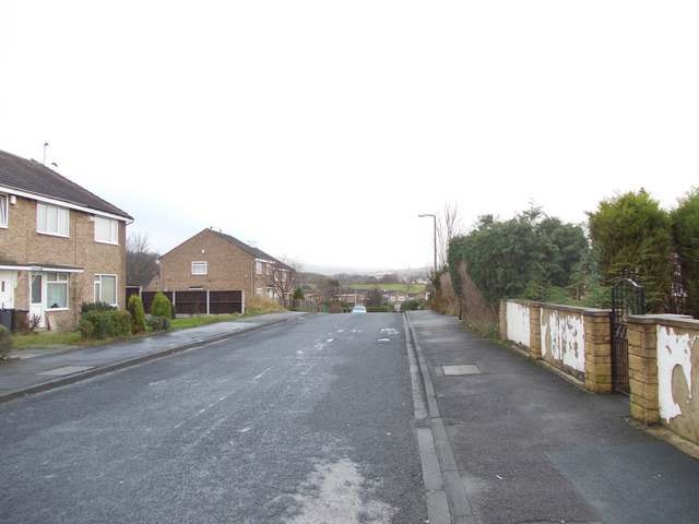 Glenrose Drive - viewed from Sycamore Avenue