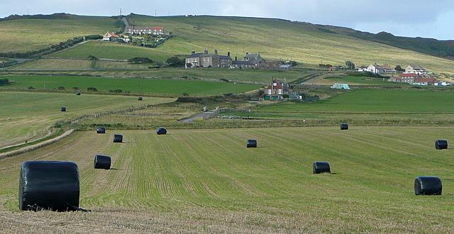 Lane near Red House Farm