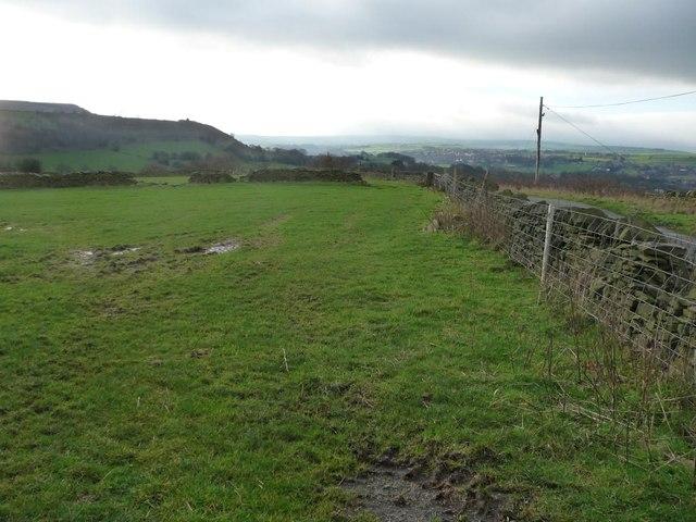 Field alongside White Ley Bank