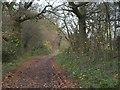 TQ4058 : Norheads Lane by Derek Harper