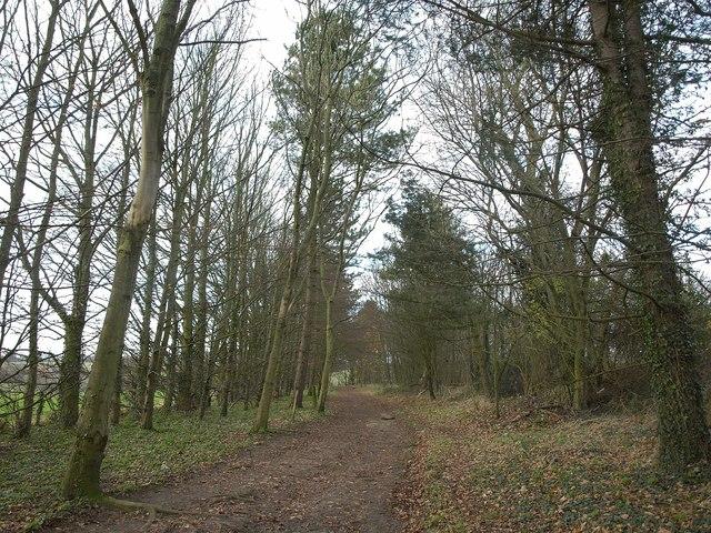 Footpath near Norheads Farm