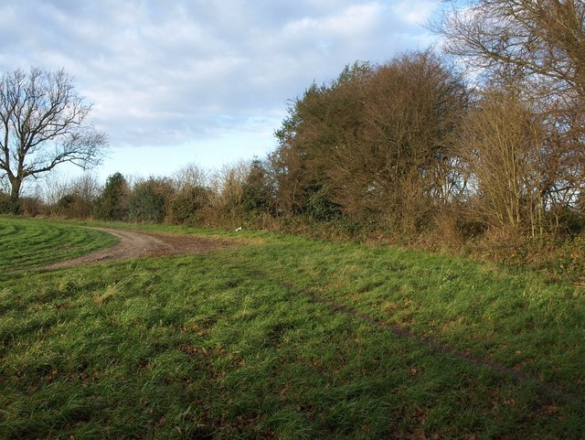 Footpath beside Long Coppice