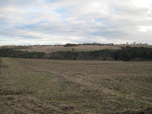 Empty  field to Mill  Wood