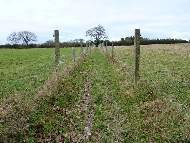 The Vanguard Way through field boundary at Newnham Park Farm