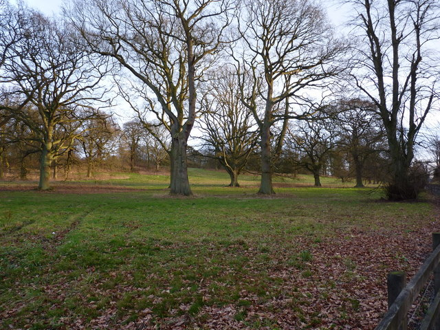 Parkland east of Lilleshall Hall