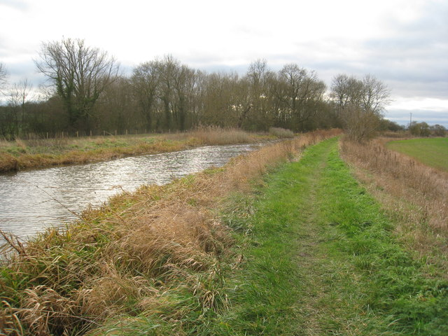 Approaching Decoy Wood