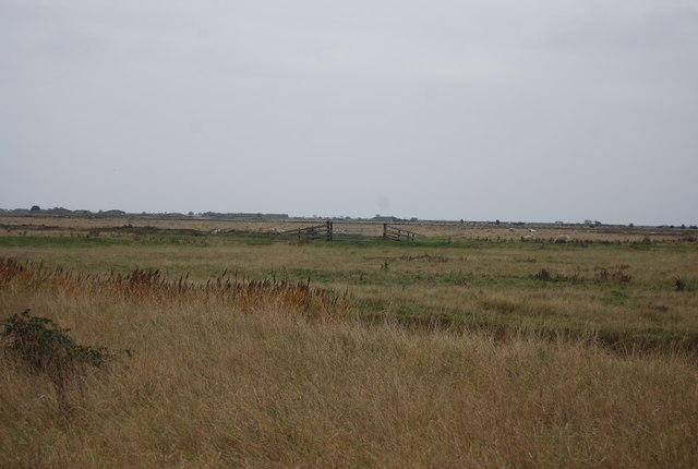 Gate on Cliffe Marshes