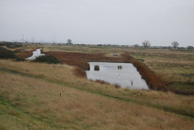 Small pond , Cliffe Marshes