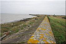 TQ7178 : Flood wall by N Chadwick