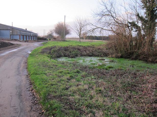 Pond by Crossways Farm