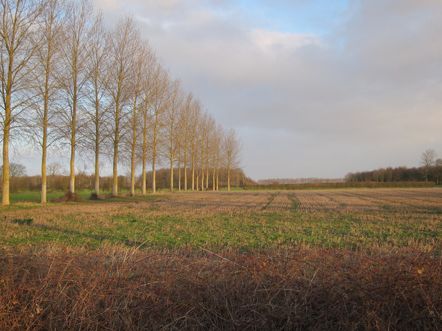 Stubble field by Hilgay Road