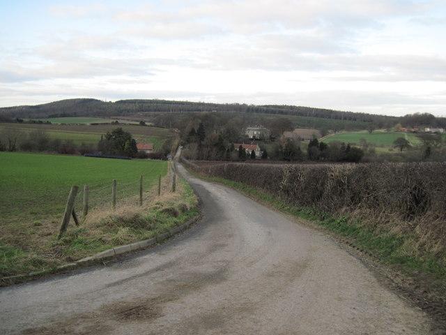 Scackleton  Lane  towards  Hovingham  Lodge
