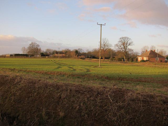 Field by Hilgay Road