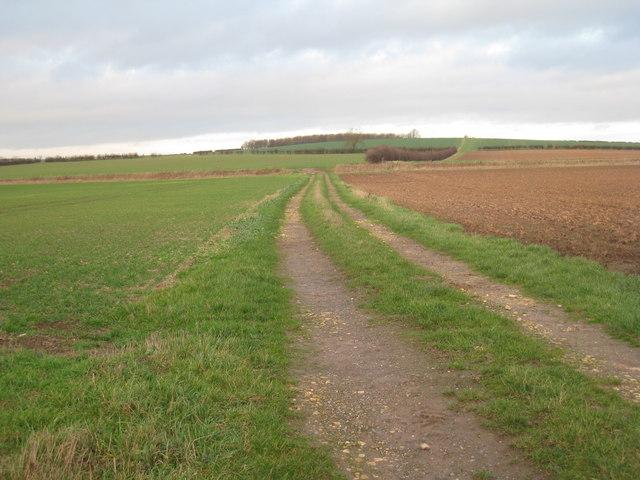 Farm track near Highfield Farm