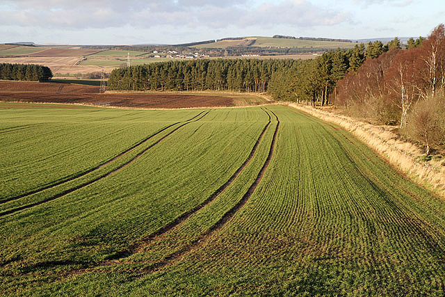 An arable field at Fans Hill