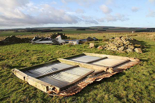 A wrecked shed at Hurd Law